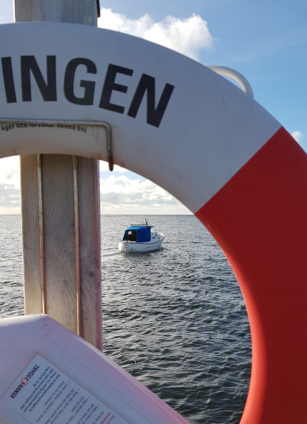 DAGBOK NIDINGENS FÅGELSTATION – FREDAG 27 NOVEMBER 2020