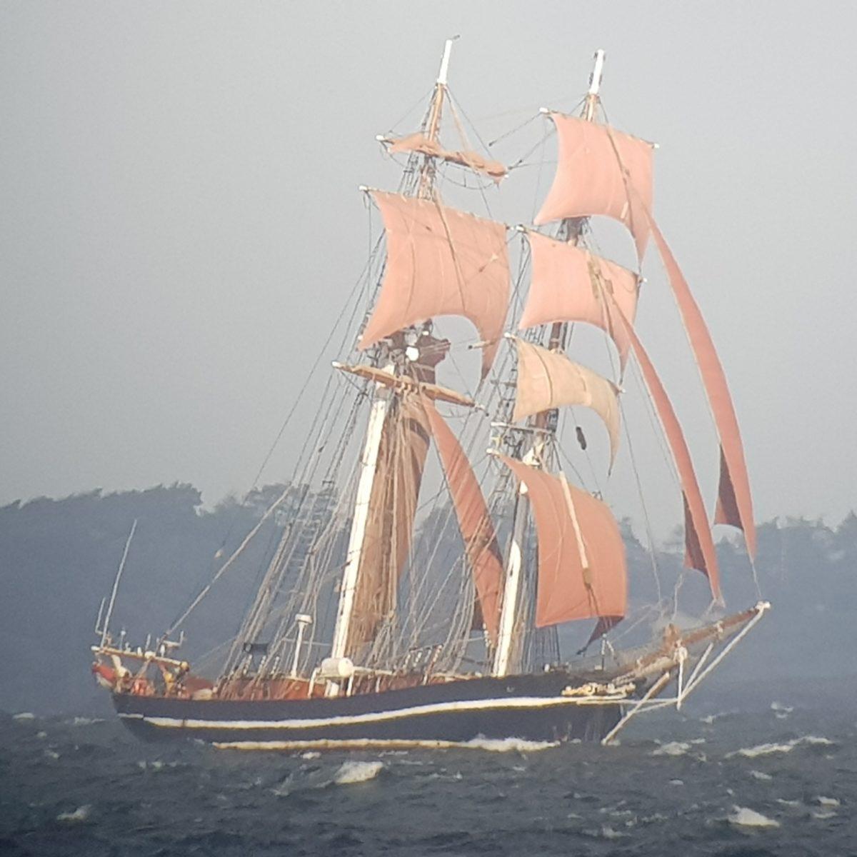 Dagbok 2010